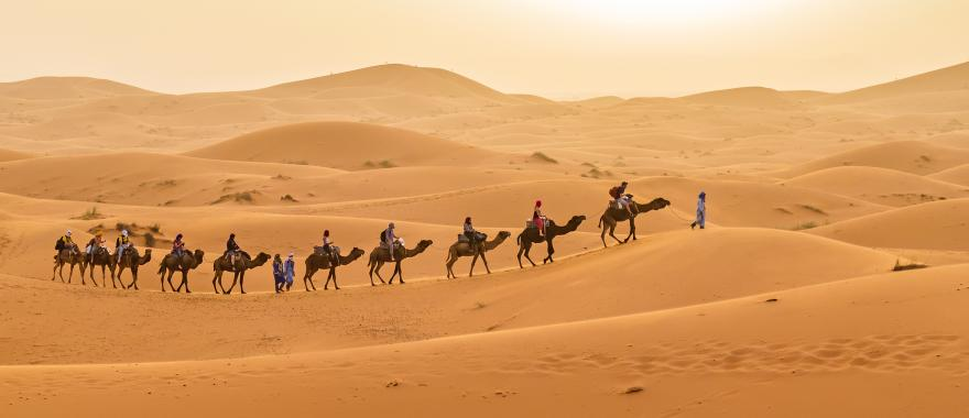 morocco_merzouga_tourists_vist_dunes_during_camel_excursion-e_h1